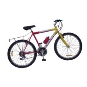 Bicicleta Vitina
